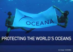 Oceana Problems and Solutions